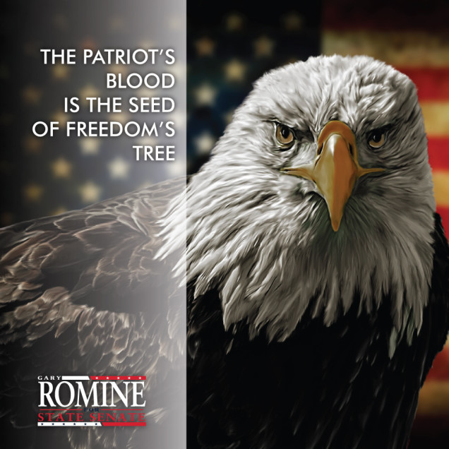 Gary Romine Text with Bald Eagle and American Flag Background
